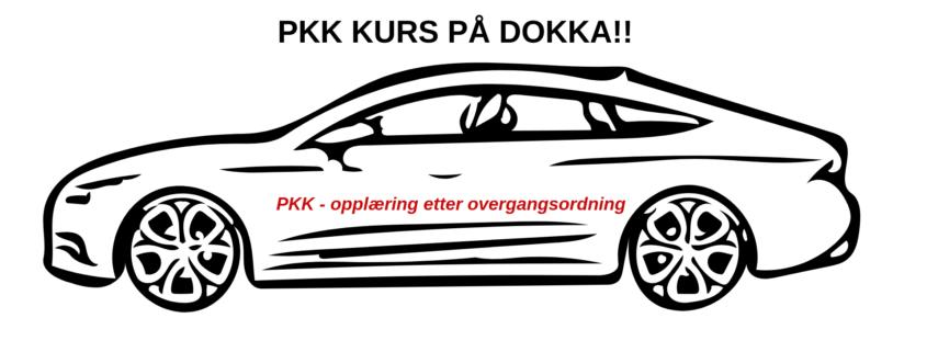 Periodisk kjørekontroll